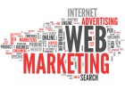 Website/Social Media